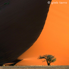 Namibia Phototour
